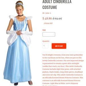 Adult Cinderella Costume Dress and Tiara 18 / 20